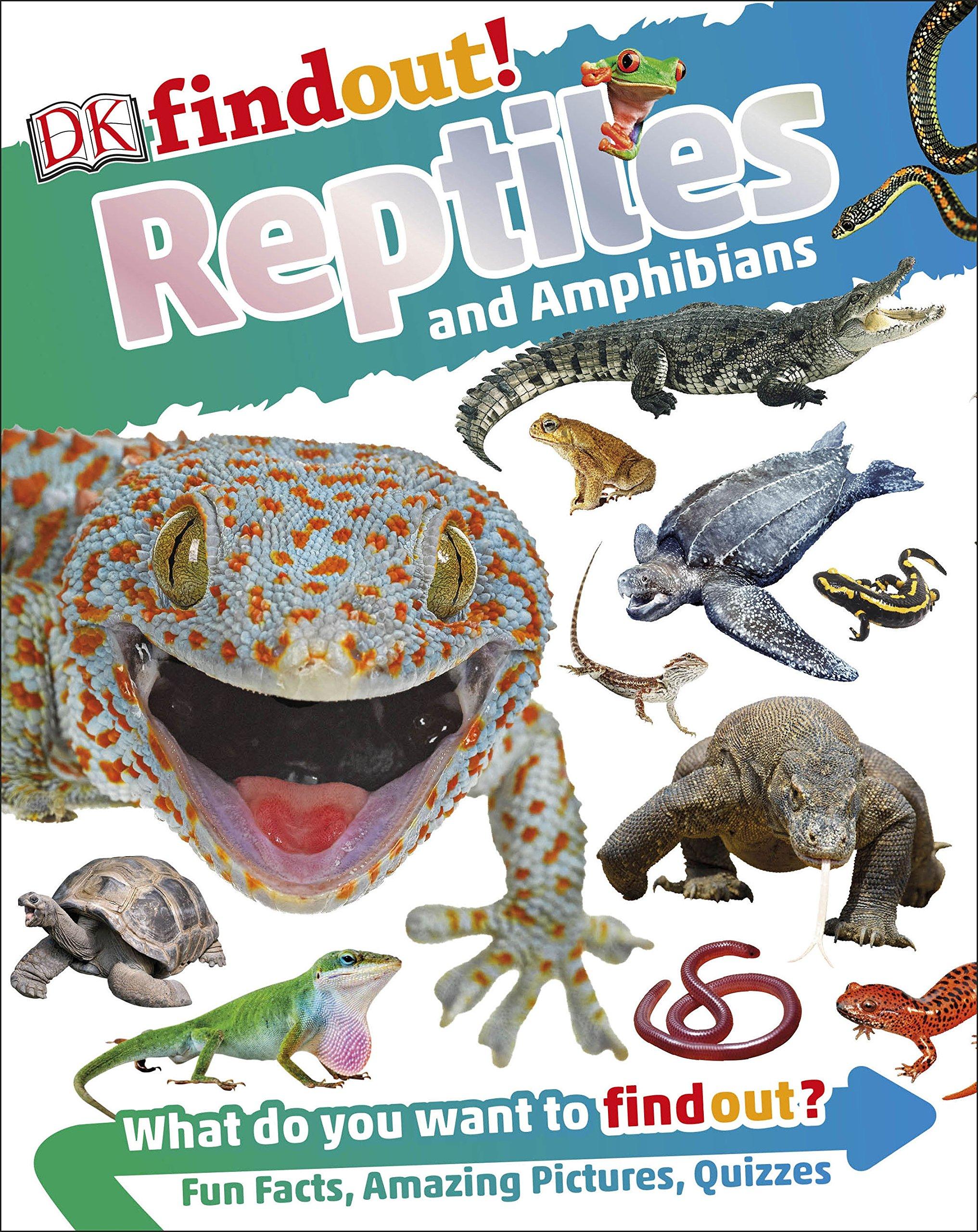 DKfindout! Reptiles and Amphibians: Amazon.es: DK: Libros en idiomas extranjeros