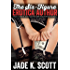 The Six-Figure Erotica Author: How I Make Six Figures Self-Publishing Erotica