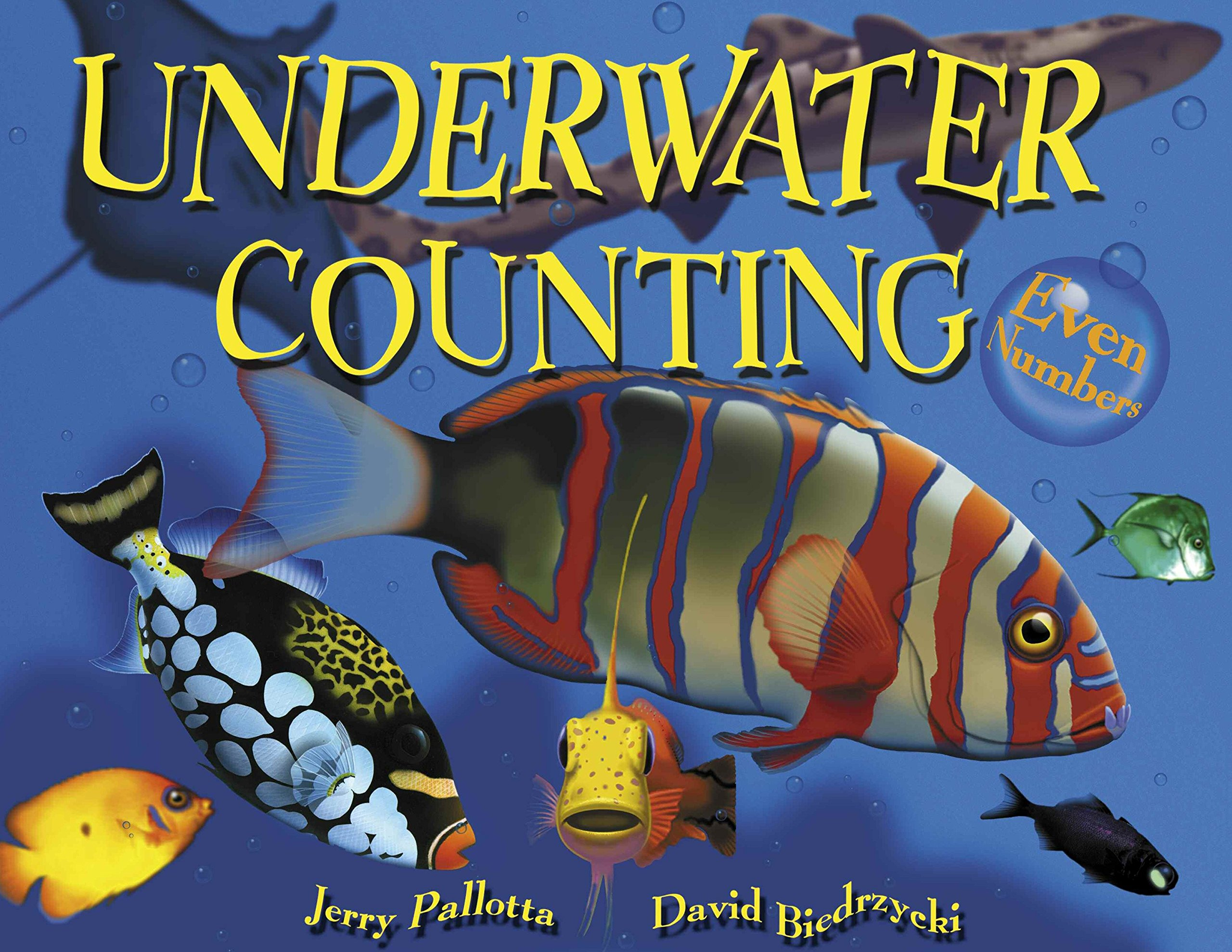 Underwater Counting Numbers Jerry Pallottas product image