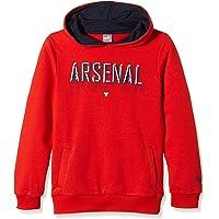 Puma Niños Sudadera Arsenal Fan Hoody