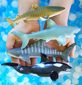 SENSORY4U Ocean Water Beads Swimming with Sharks Sensory Kit - Large Shark Toys Included - Dew Drops Offer Great Fine Motor Skills and Sensory Bin Kit for Kids