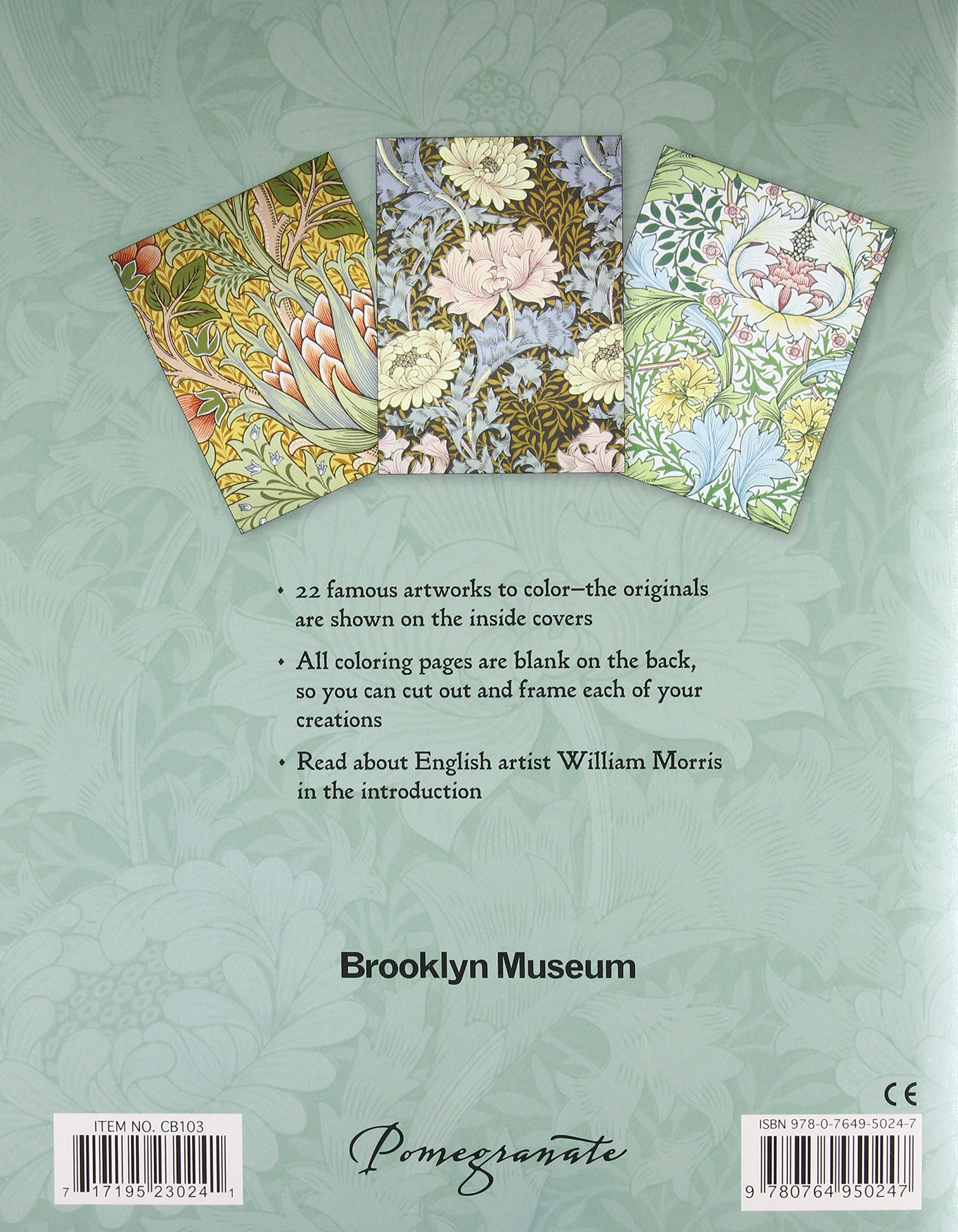 William Morris Coloring Book: Brooklyn Museum of Art: 9780764950247 ...