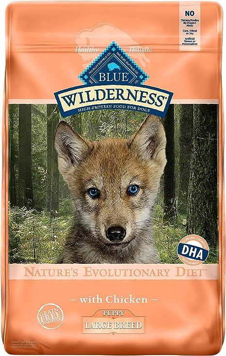Azul Buffalo Wilderness Alta proteína seco Cachorro Alimentos