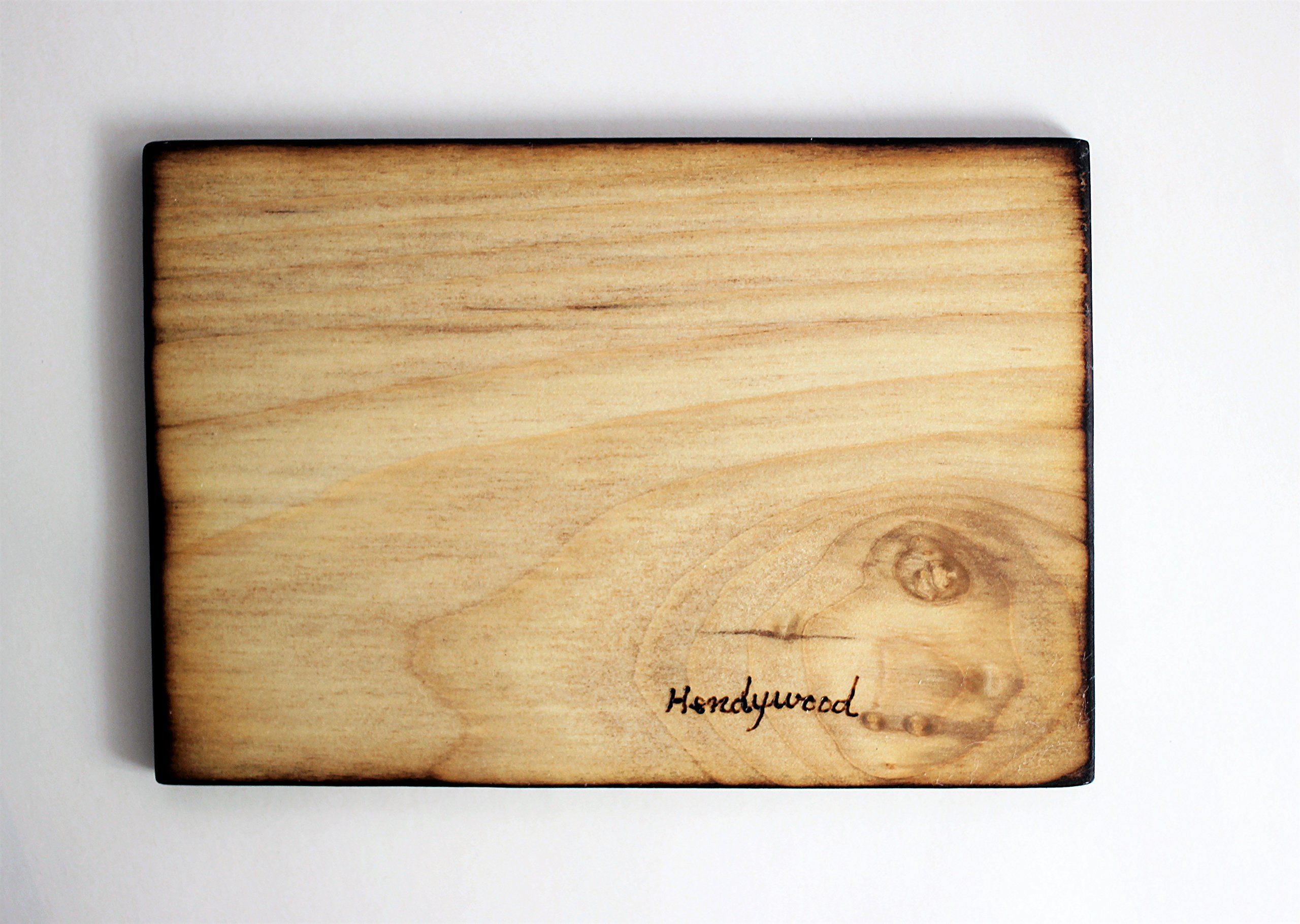 Wood Burned Polyphemus Moth Pyrography Small Woodburned Nature Insect Picture by Hendywood (Image #6)