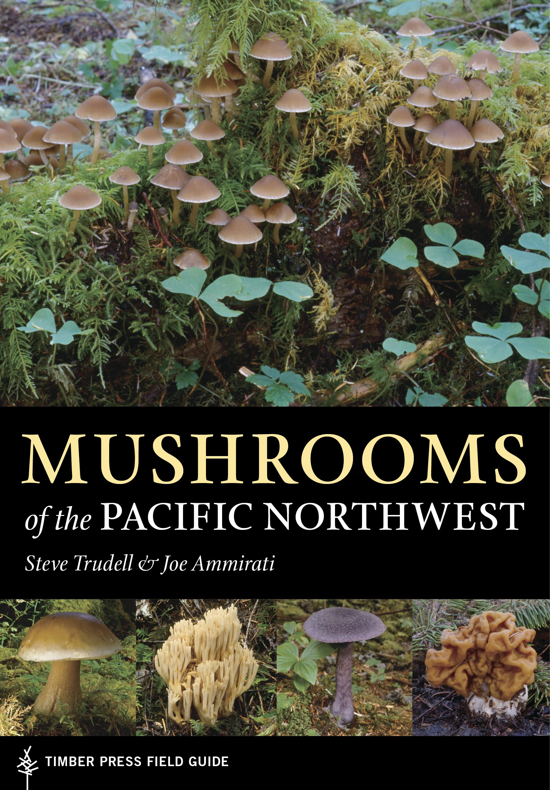 Mushrooms Of The Pacific Northwest A Timber Press Field Guide Joe