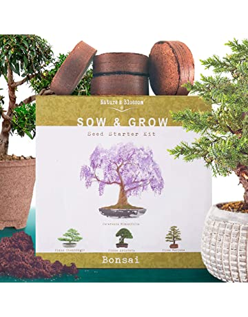Vegetable Plants & Seeds | Amazon com
