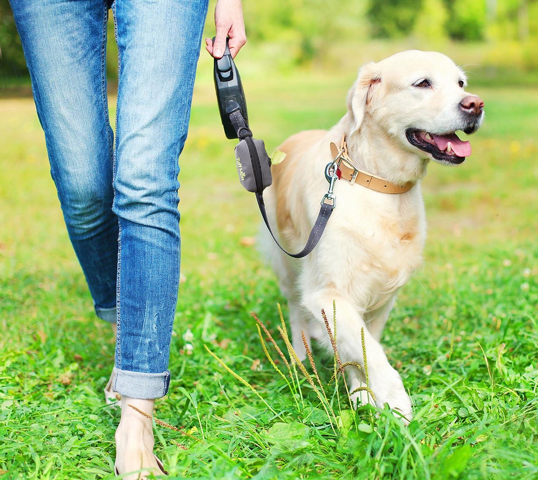 Dog Accessory Dog Walking Accessory Waste Bag Dispenser Dog Poop Bag Dispenser Cute Dog Accessory POOch Pouch Dog Poop Bag Holder