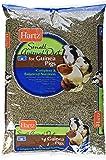 Hartz Small Animal Diet for Guinea Pigs (1 Pack), 10 lb