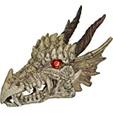 Penn-Plax RR1207 Dragon Skull Gazer Ornament