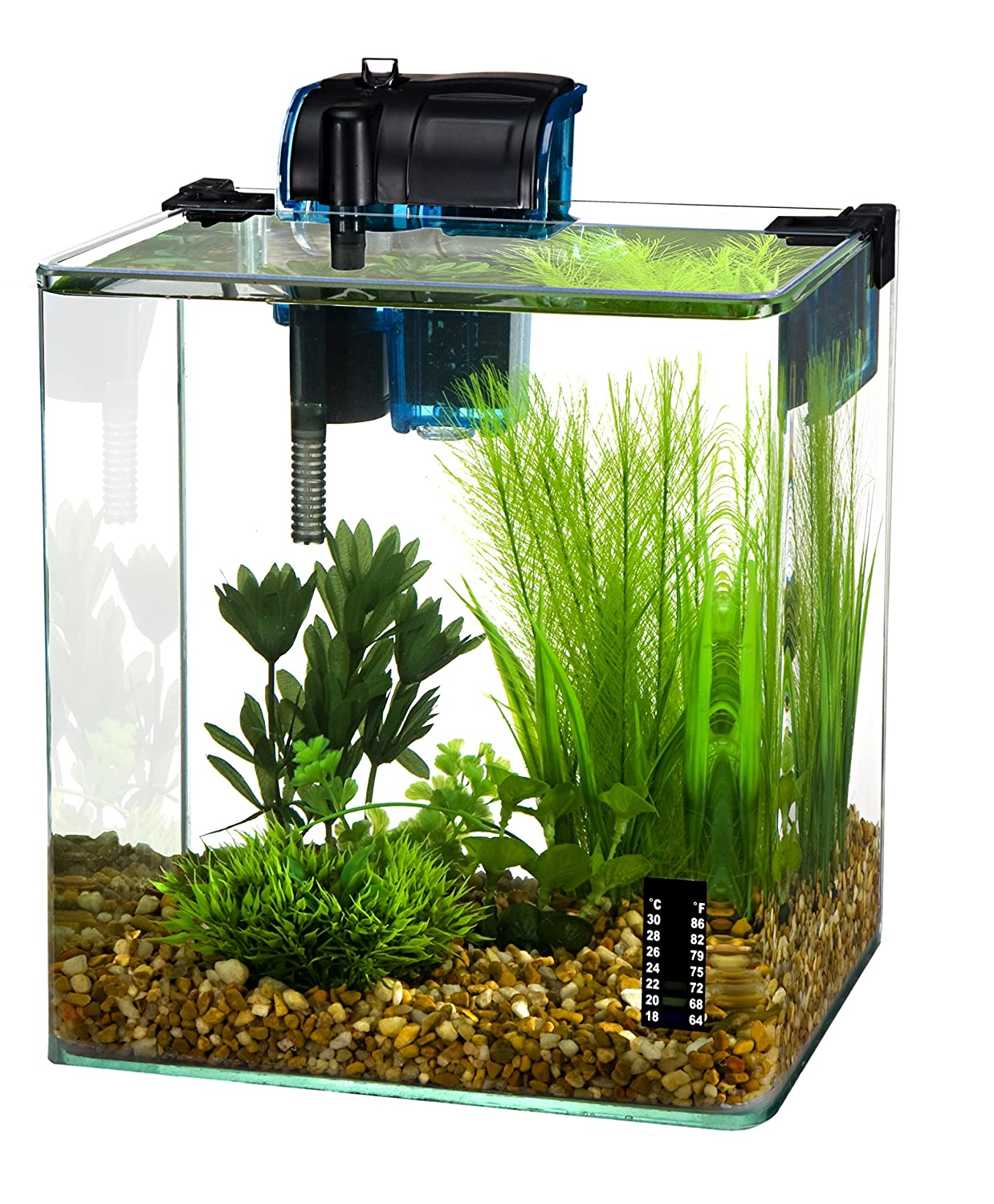 Amazon Com Penn Plax Vertex Aquarium Kit For Fish And Shrimp With Filter Thermometer Desktop Size   Gallon Aquariums Pet Supplies