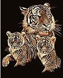 KSG - PPCF7 - Peinture Au Numéro - Motif Le Tigre Et Ses Petits - 20 x 25 Cm - Scraper - Cuivre