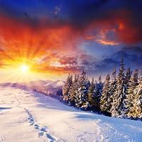 Winter Wonderland Live Wallpaper