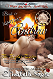 Igniting Andrew (Tarnished Saints Series Book 11)