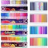 Gelmushta 240 Penne Gel Colorate con un Set da Regalo per Disegno Adulto (120 Penne Gel e 120 ricariche d'inchiostro)