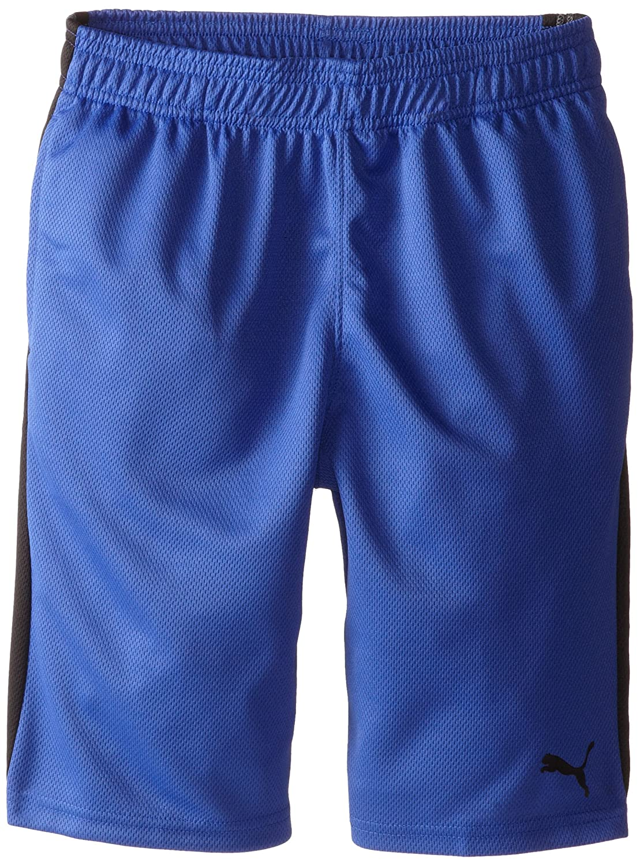 PUMA boys Big Kids Form Stripe Shorts (Big Kids) PUMA ULC Boys 91153006