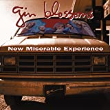New Miserable Experience (SRCHIFI Limited Audiophile 45-RPM)