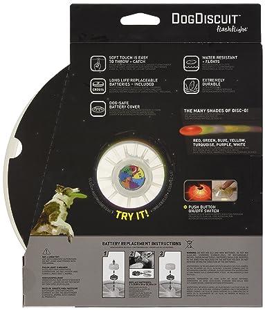 Nite Ize Dog Discuit - Disco Volador, Color Disco: Amazon.es ...