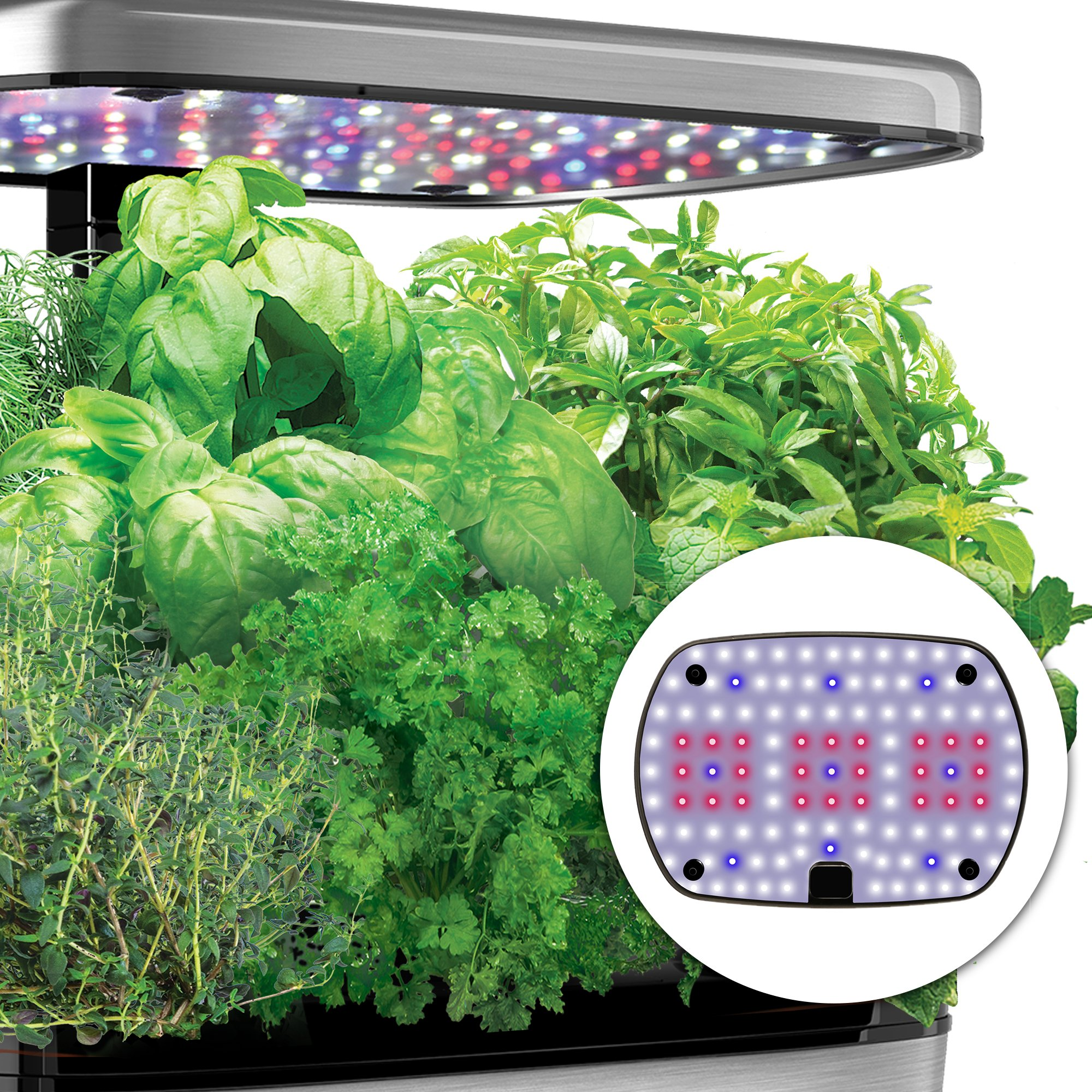 AeroGarden Harvest Elite with Gourmet Herb Seed Pod Kit, Stainless Steel by AeroGrow (Image #4)