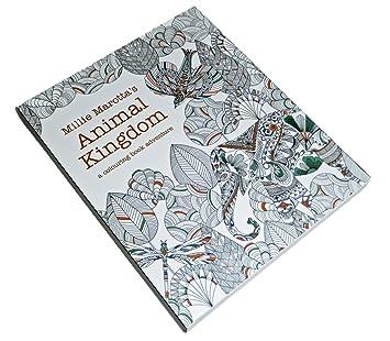 Amazon Animal Kingdom ぬりえ カード 動物たちのぬり絵 塗り絵 英語