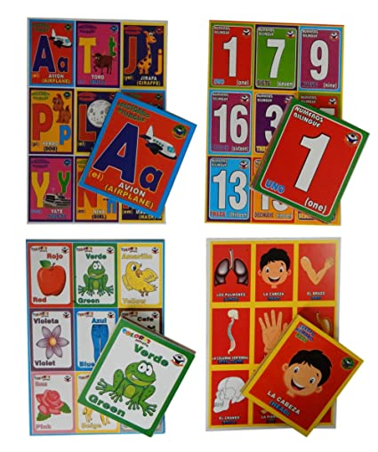 Prodidac Jr Bingo Bundle: Alphabet, Numbers, Colors and Human Body