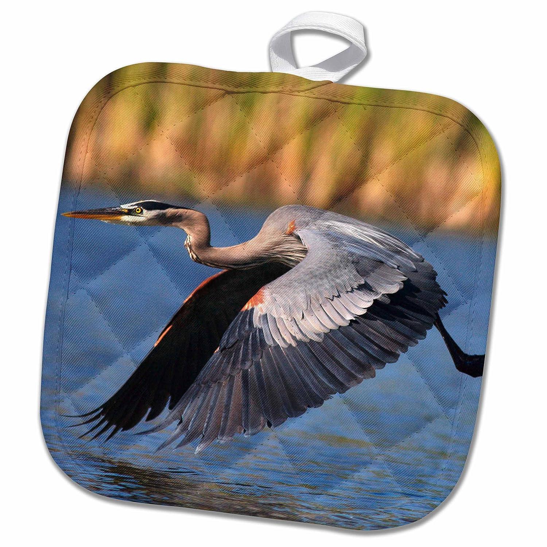 Blue Heron Flying 3D Rose USA Lakeside Pot Holder 8 x 8 San Diego California