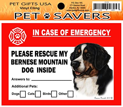 IN CASE OF EMERGENCY RESCUE MY LHASA APSO STICKER