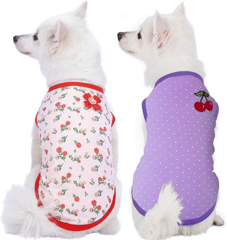 8 best dog comfort vest 8
