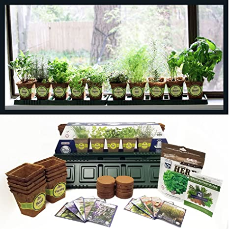 Charming Sustainable Seed Company Windowsill Herb Garden Kit, Indoor Herb Garden Kit  Complete With A 10