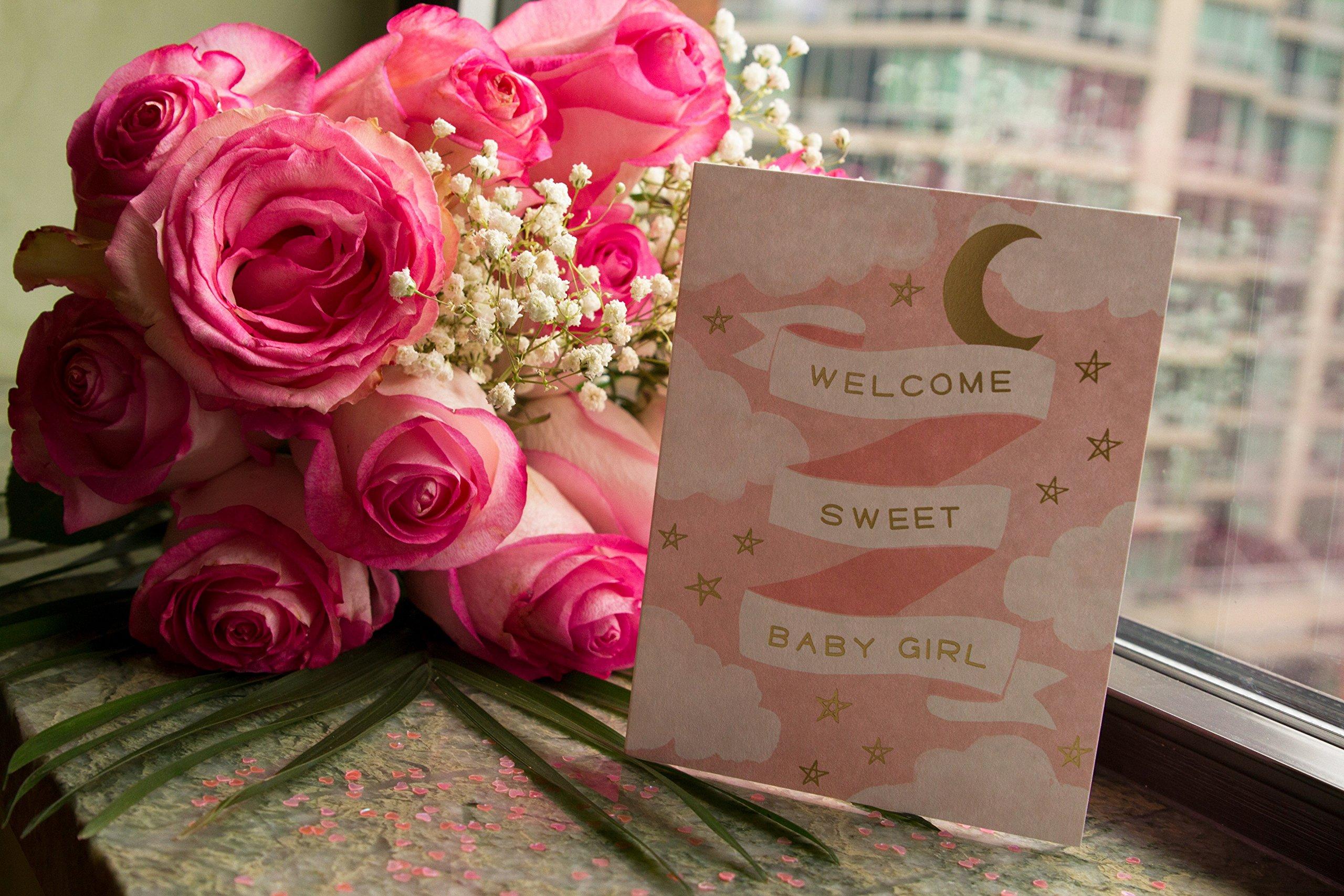 Flowers - One Dozen Light Pink Roses