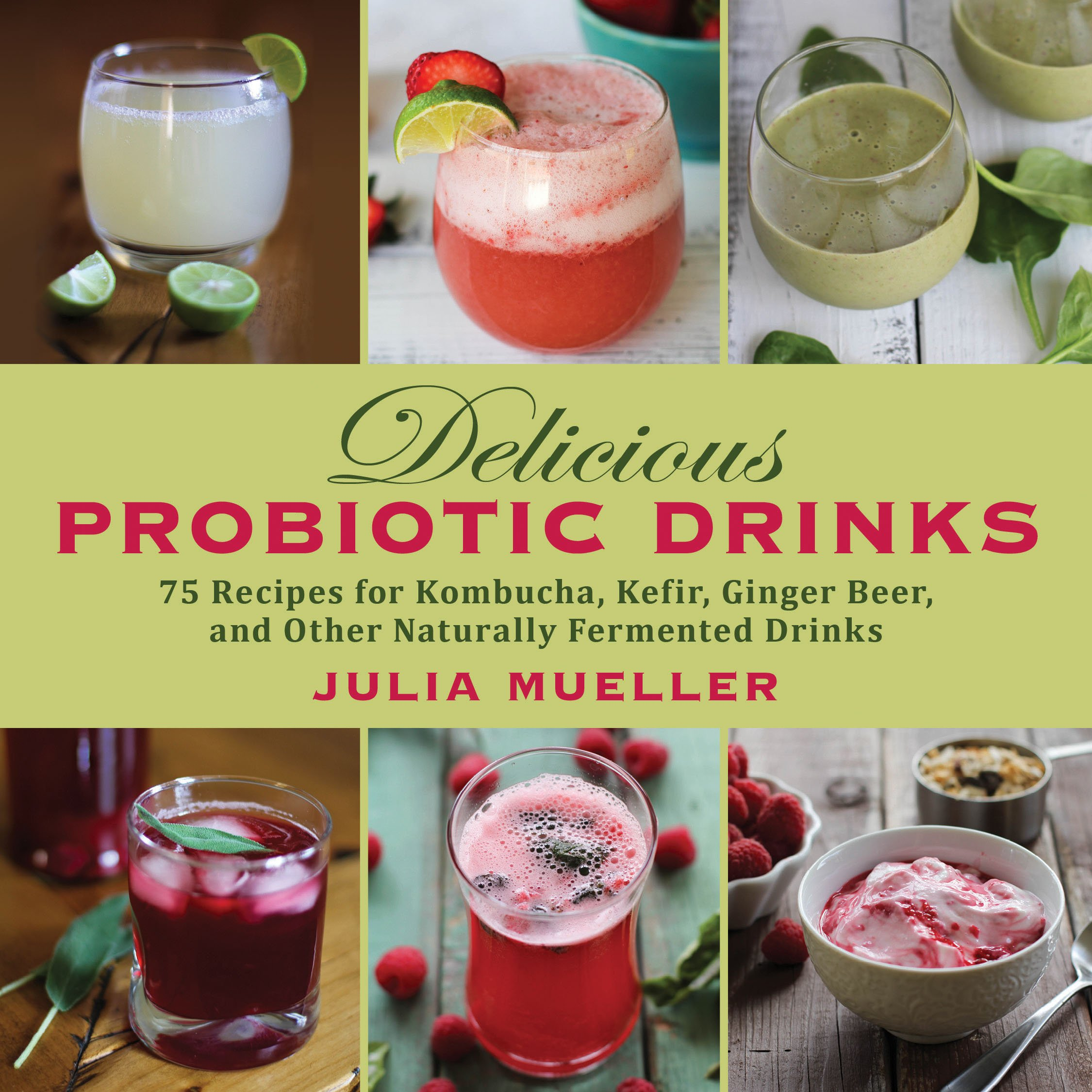 Delicious Probiotic Drinks Naturally Fermented product image