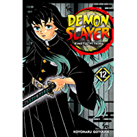 Demon Slayer: Kimetsu no Yaiba, Vol. 12: The Upper Ranks Gather book cover