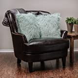 Chanasya Soft Shaggy Fuzzy Fur Long Mangolian Faux Fur Cozy Elegant Chic Decorative Aqua Blue Throw Pillow Cover Pillow Sham- Turquoise Teal Throw Pillowcase 18x18 Inches (Pillow Insert Not Included)