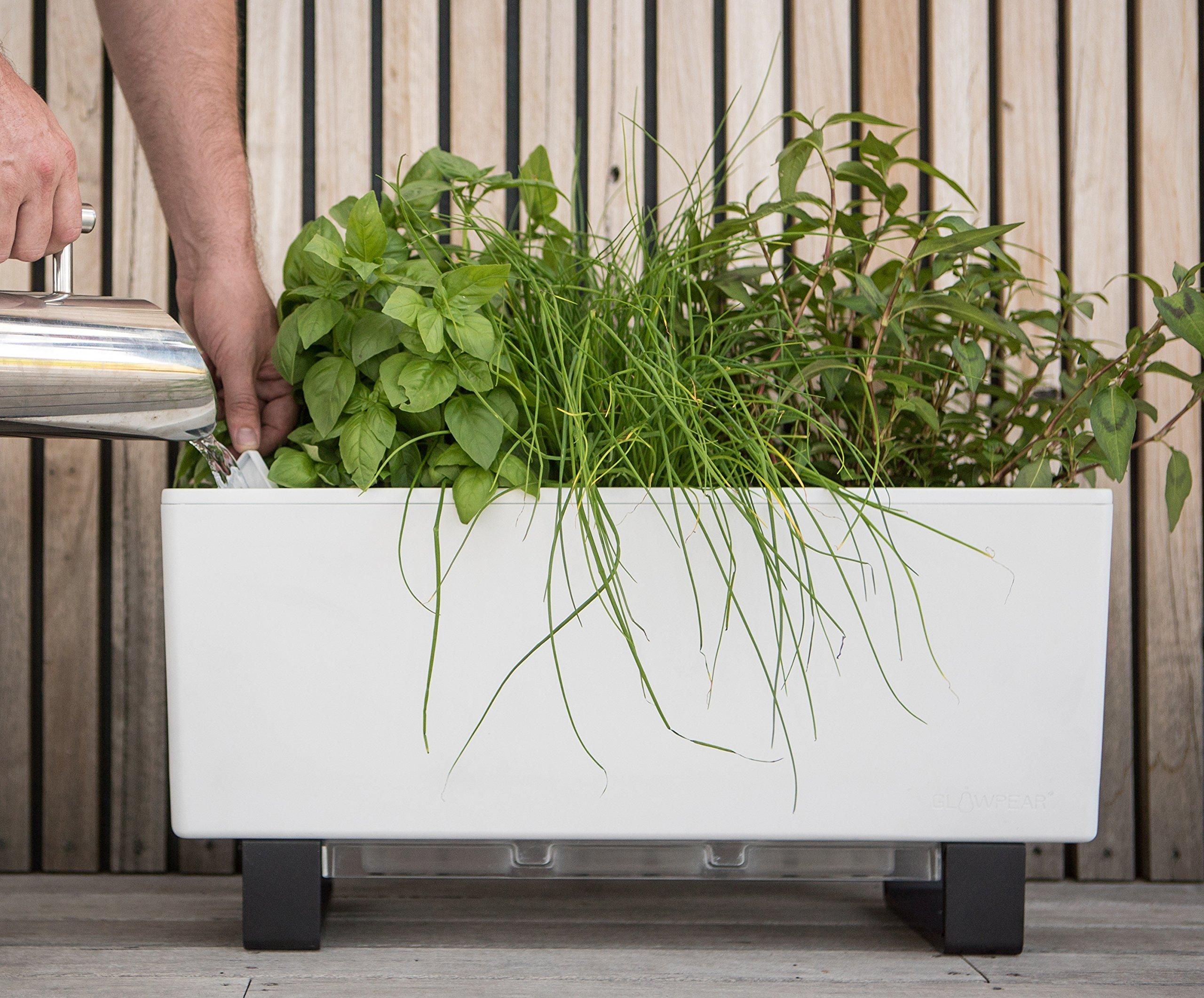 Glowpear Urban Garden Self Watering Mini Bench Planter Ebay