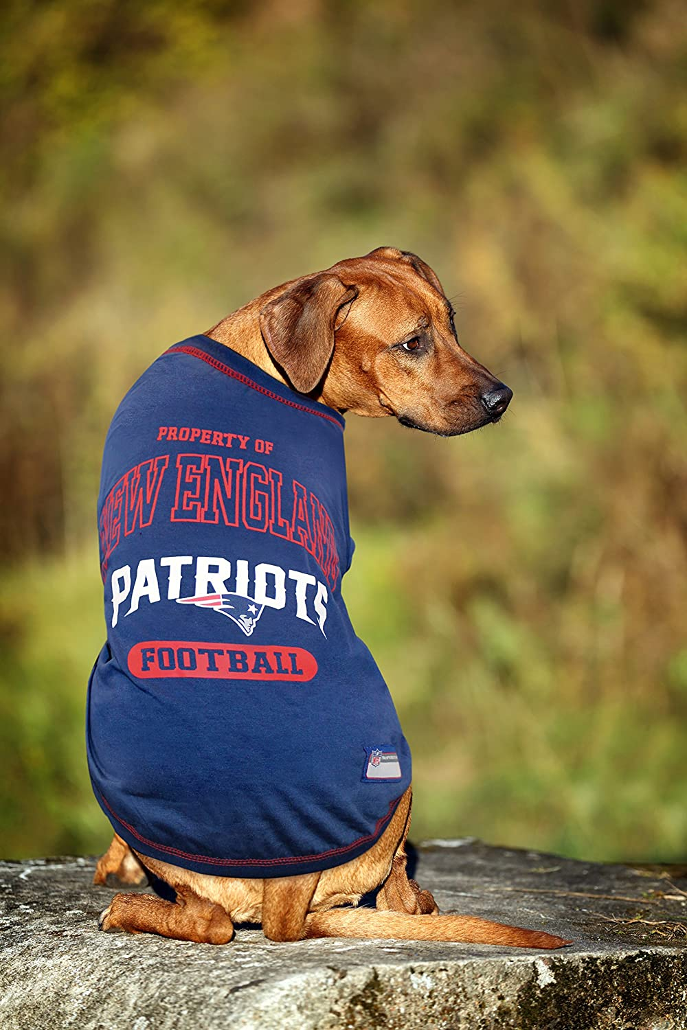 Amazon.com   NFL T-SHIRT - DOG TEE SHIRT - Football DOGS   CATS SHIRT -  Durable SPORTS PET TEE - 5 Sizes available in 32 NFL TEAMS - NFL PET OUTFIT  UGLY ... f5816aaba