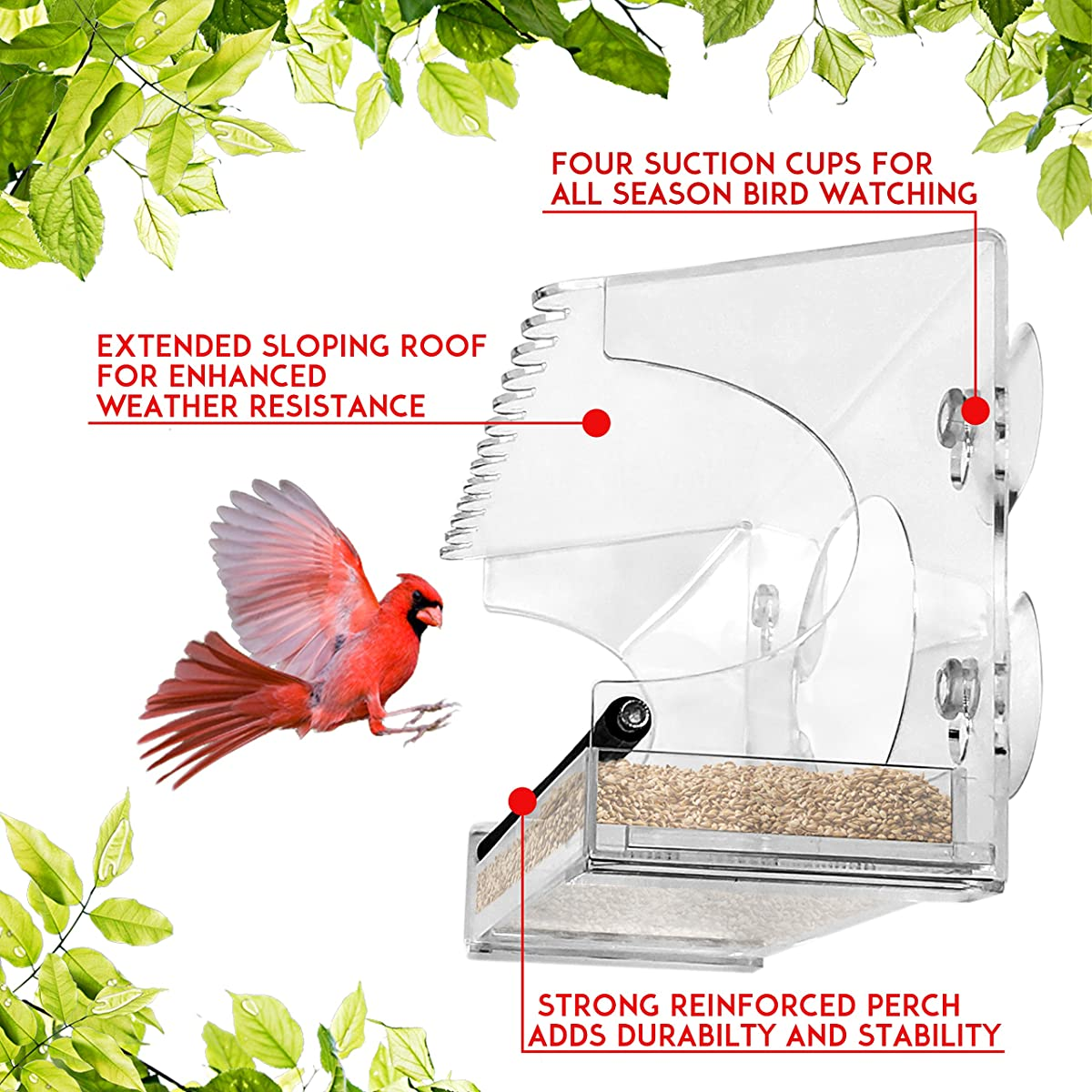 Nature Gear XL Window Bird Feeder - Extended Roof - Steel Perch - Sliding Feed Tray Drains Water - See Wild Birds Like Finches, Cardinals and Chickadees Up Close!