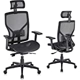 SUNNOW Ergonomic Office Chair Computer Mesh Chair with Adjustable Lumbar Support, Sliding Seat, Headrest, 3D Armrest-High Bac