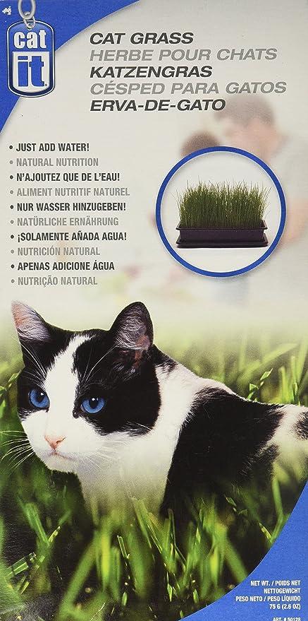 Catit Cat Grass, 2.6-Ounce