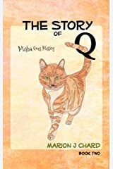 The Story of Q - Misha Goes Missing: Book 2 Kindle Edition