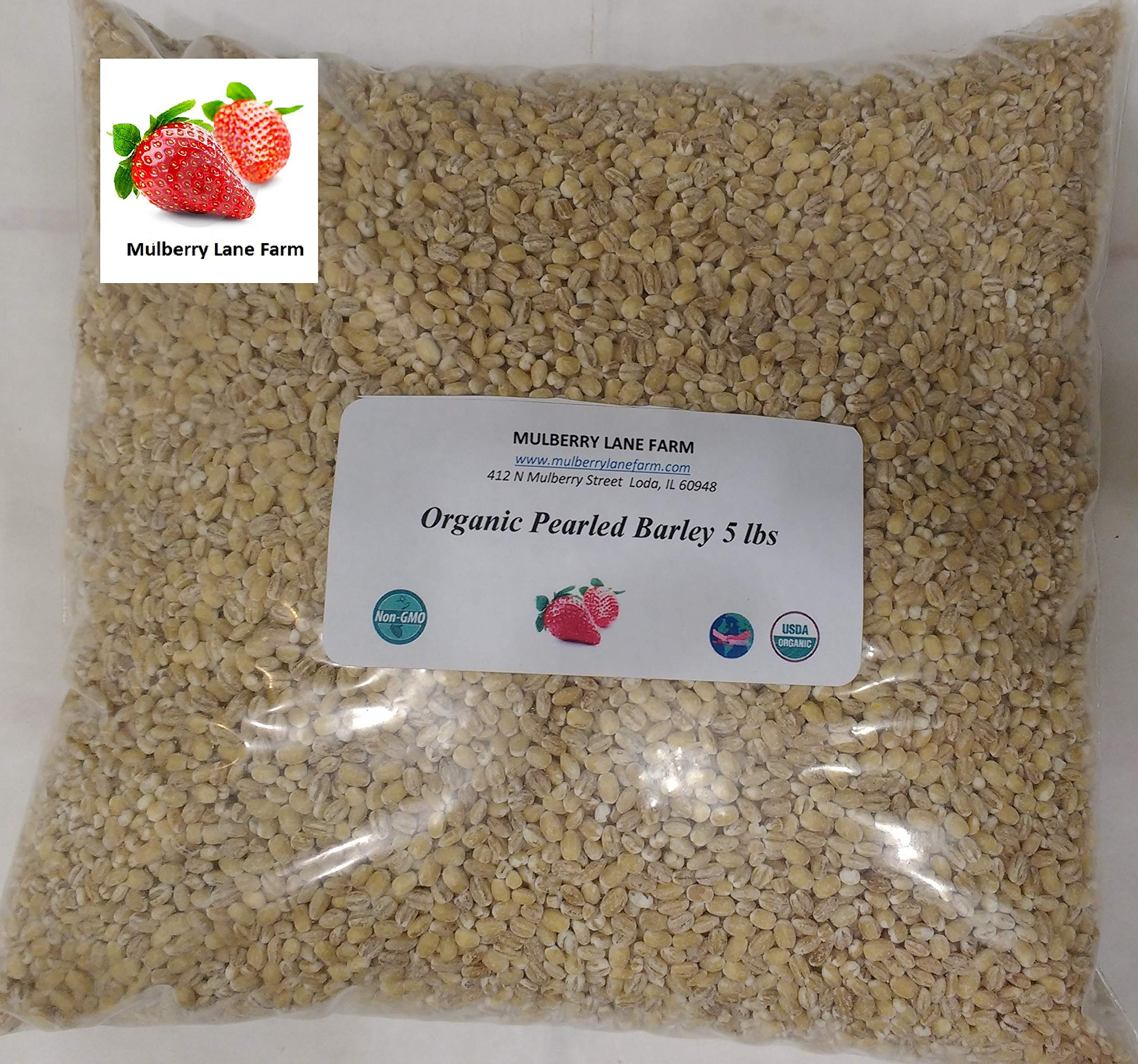 Pearled Barley 5 Pounds (five lbs), Pearl, USDA Certified Organic, Non-GMO, BULK.
