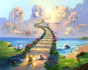 Amazoncom 16x20 11x14 Or 8x10 Rainbow Bridge All Pets Go Stairway