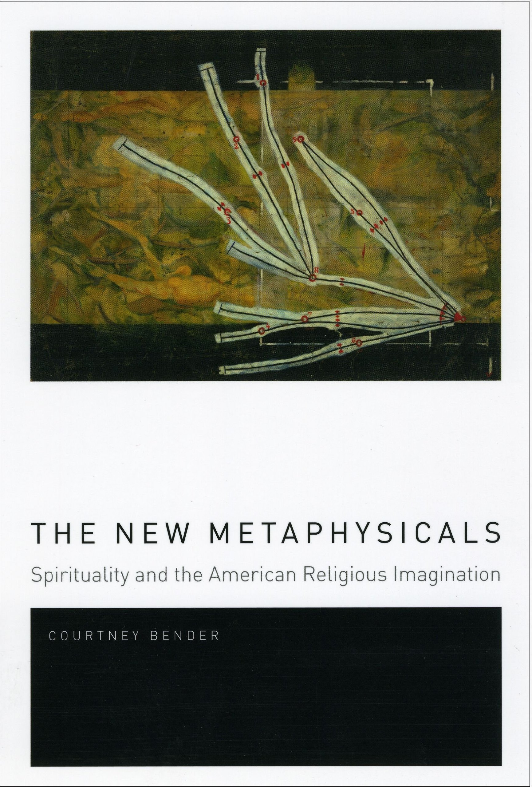 The New Metaphysicals: Spirituality and the American Religious Imagination:  Courtney Bender: 9780226042800: Amazon.com: Books
