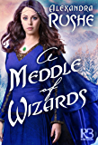 A Meddle of Wizards (Fledgling Magic)