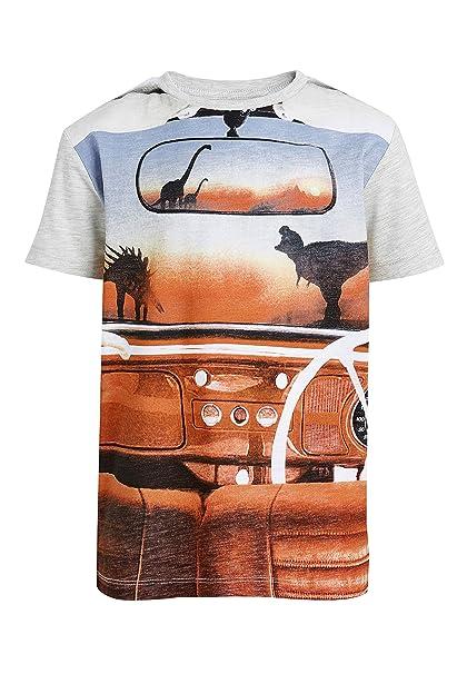 next Niños Camiseta con Diseño De Dinosaurio (3-16 Años) Harina De Avena