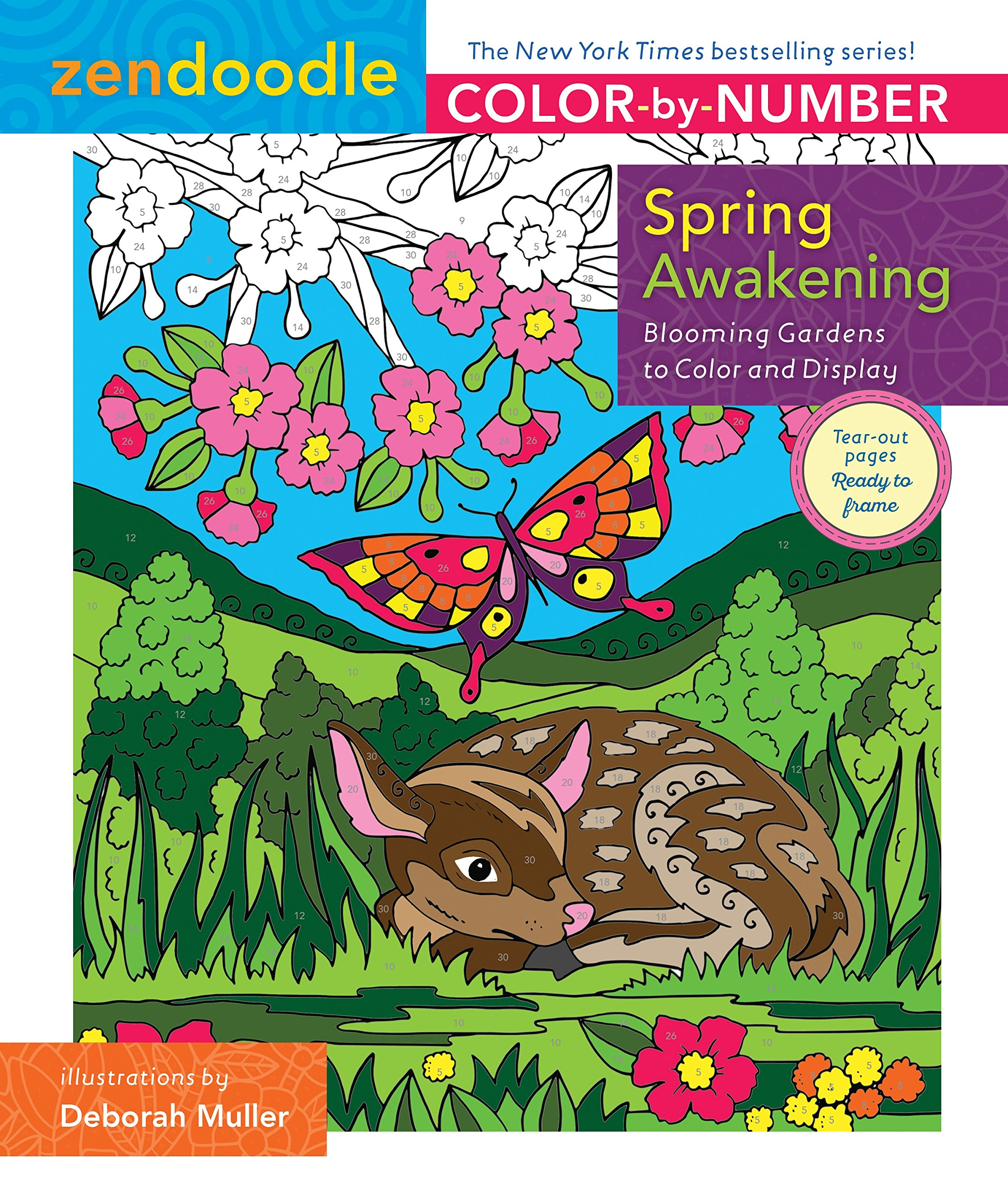 Amazon.com: Zendoodle Color-by-Number: Spring Awakening: Blooming ...
