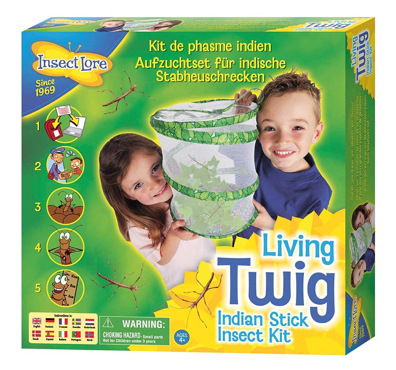 価格は安く Stick Stick Insect Kit Insect Kit B000S5MYIS, 塩原町:712400ac --- mrplusfm.net
