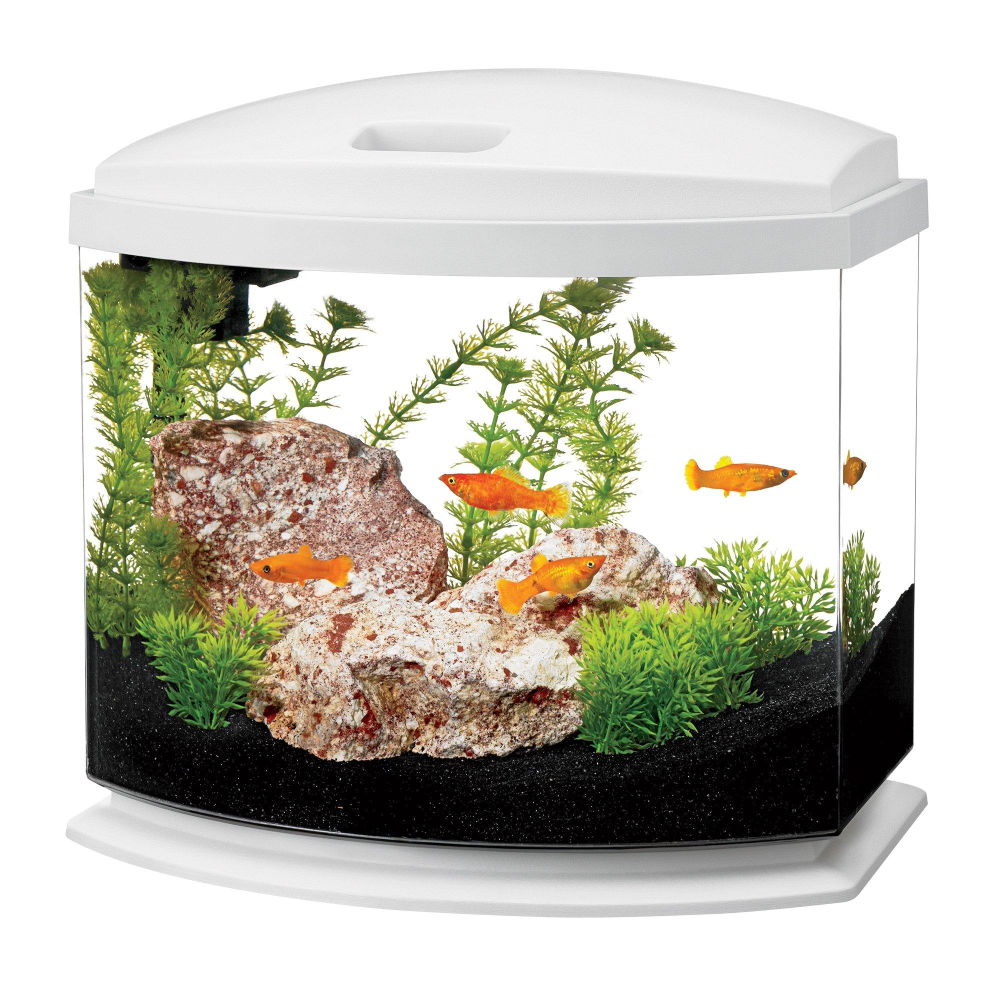 Aqueon LED Minibow Aquarium Starter Kits with LED Lighting, 5 Gallon, White by Aqueon