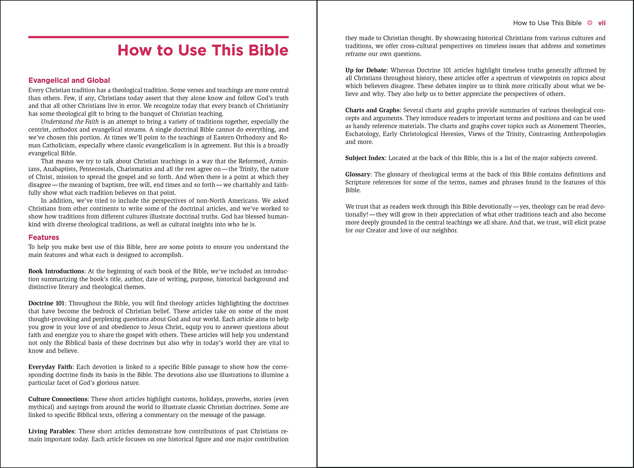 NIV, Understand the Faith Study Bible, Hardcover: Grounding