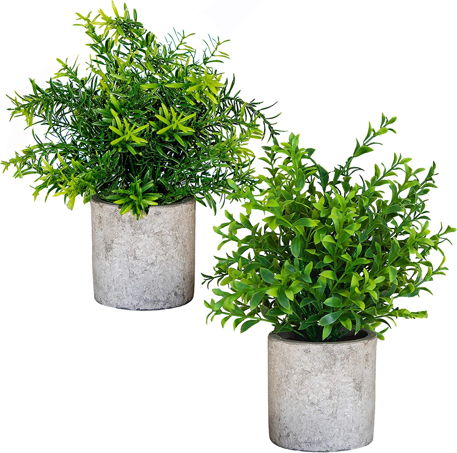 Amazon Com Small Artificial Plants In Pots For Home Decor Fake Faux Feaux Face Decorative Plant Decoration Arrangements Mini Artificial Potted Plants Greenery Decor Shelf Desk Office Green Rosemary Bamboo 2 Kitchen