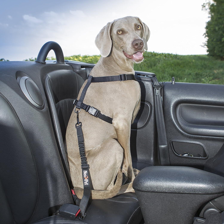 Hunde-Anschnall-Gurt 2 Gr/ö/ßen f/ür gro/ße und kleine Hunde Hund-Auto-Gurt zum anschnallen f/ür die R/ückbank Hunde-Sicherheitsgurt NeoPet Hundegurt f/ürs Auto