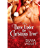 Three Under the Christmas Tree: A Gay Menage Romance